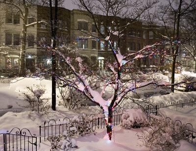 December: Silent night (ISO 2500)