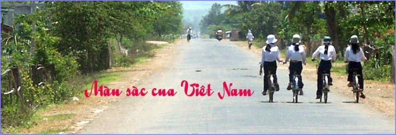 Màu sàc cua Viêt Nam Banner
