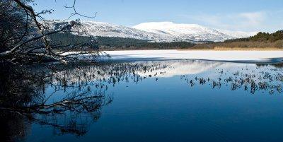 23_Feb_2010 Loch Davan