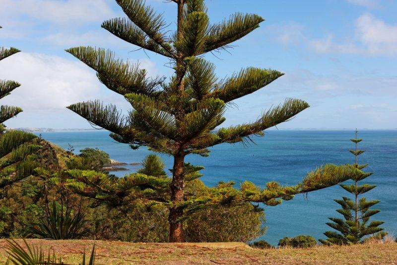 Mangonui across Doubtless Bay to Cape Karikari .JPG