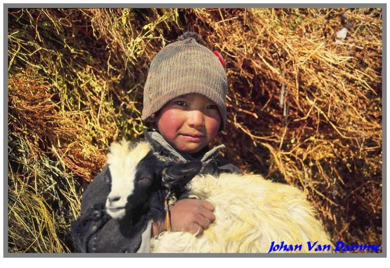 Chaddar Wintertrek to Zanskar-Lingshed