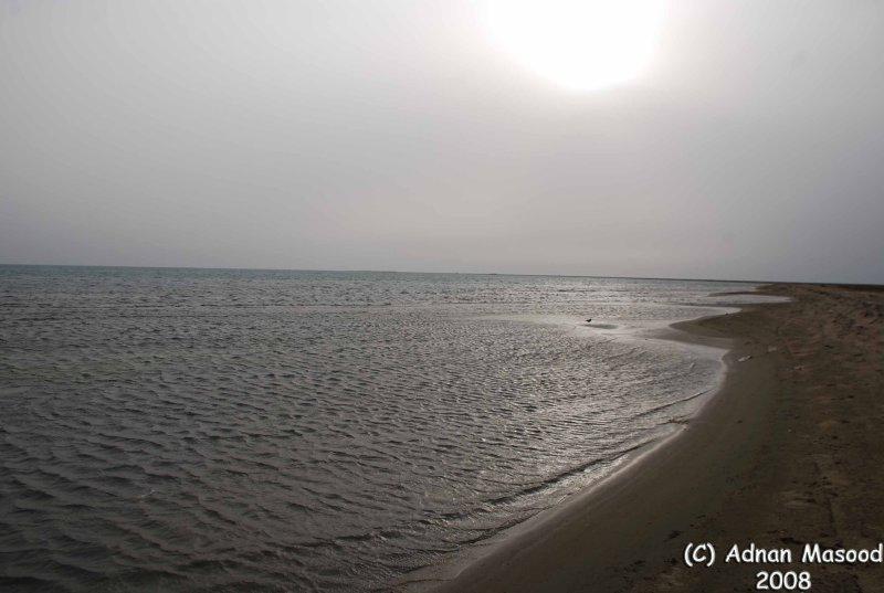 004-Aseer Coastal line.JPG