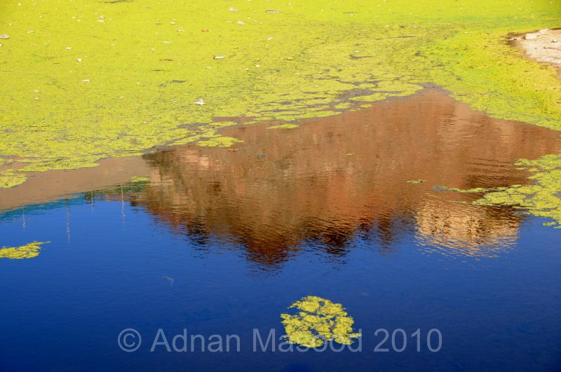 Reflections_0410.jpg