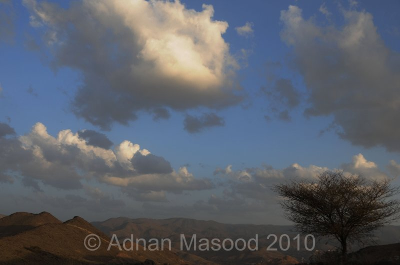 AlBahato_Taif_04135.jpg