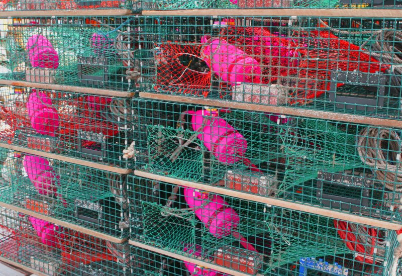 lobster pots and buoys2