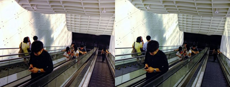 ION Orchard (Cross-View Stereo)