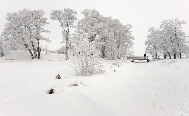 Walk in Winter Wonderland