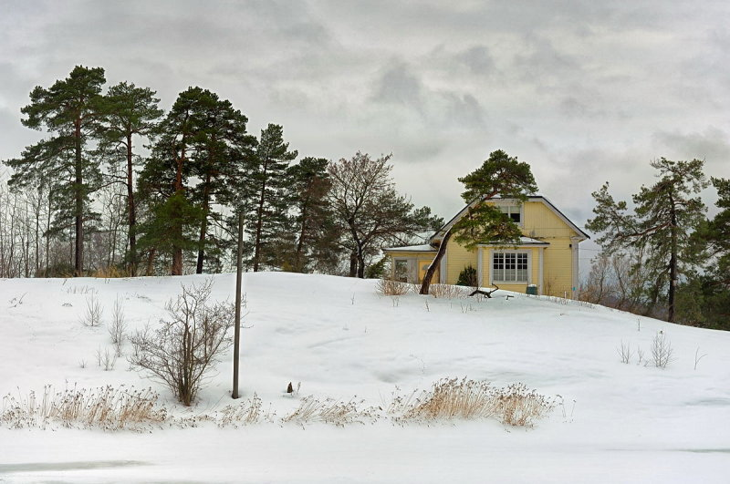 Yellow House on the Ridge