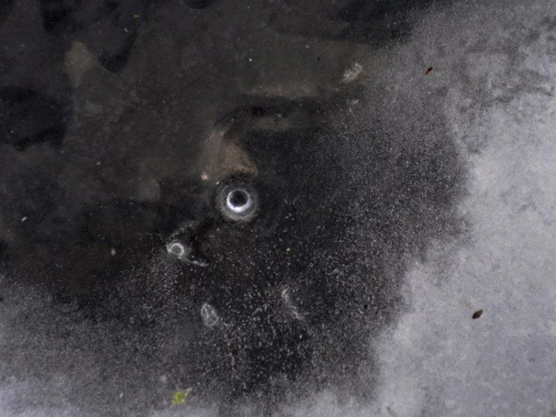 frozen expression 219