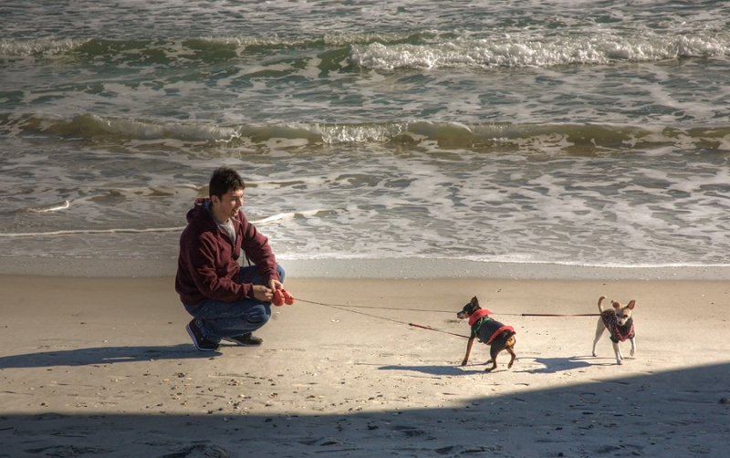 James and dogs on Wrightsville Beach