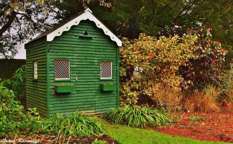 The Green Shed.jpg
