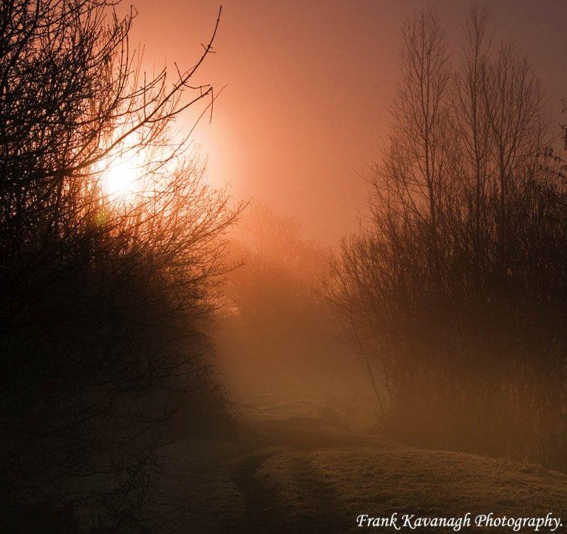 Burning Off the Fog.jpg