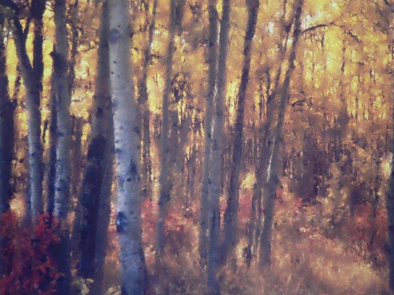 Autumn painting.jpg