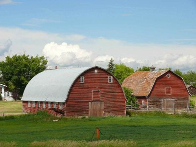 Red barns. New Sarepta.jpg