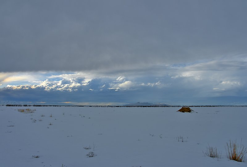 Winter Landscape; Looking South from Bird Refuge