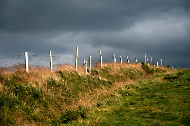 a long and windy path.