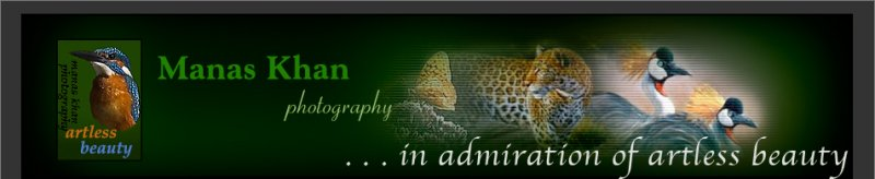 top banner_welcome