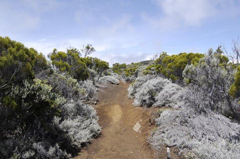 Volcano ridge path.