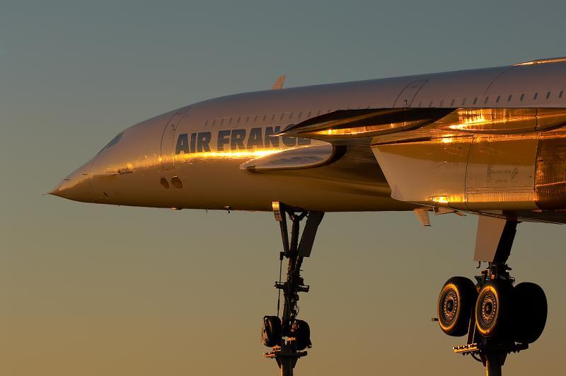 Image result for gold flight