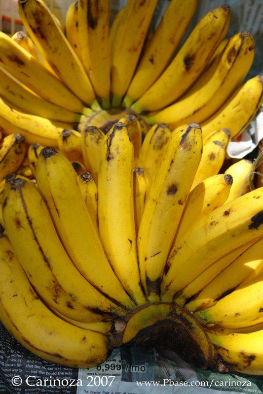Saging (Bananas)
