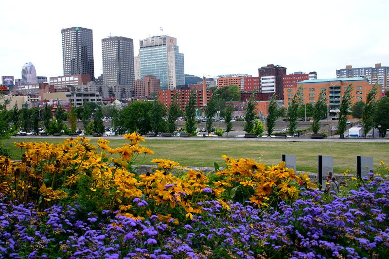 The City in flowers
