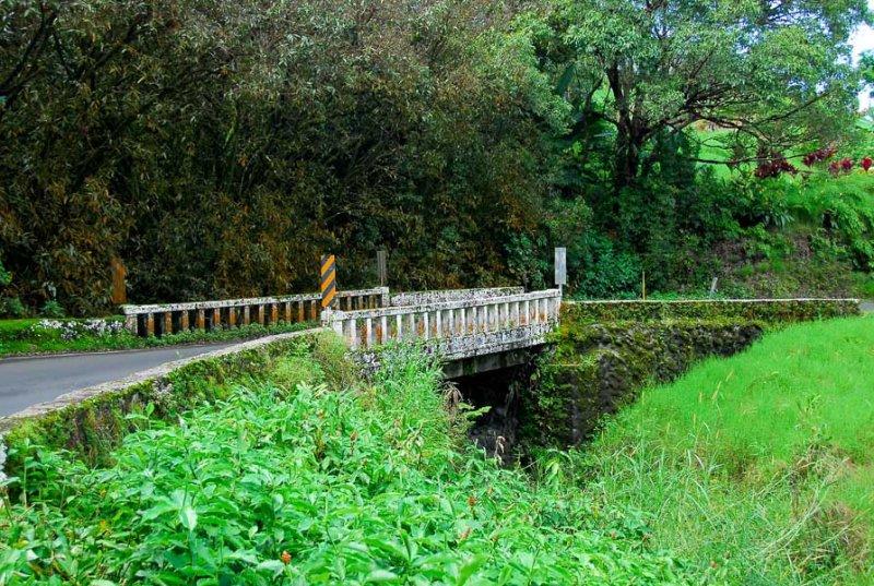 56 bridges to hana town