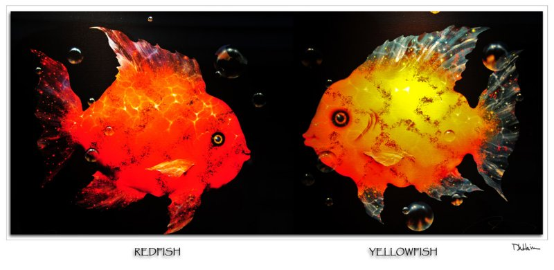red fish - yellow fish