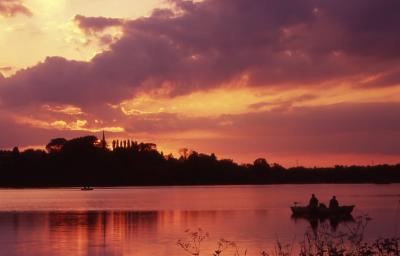 sunset thornton res,Filtered.. Untitled-1.jpg