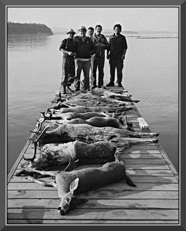 Sydney Island Massacre