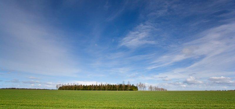 Norfolk Panorama