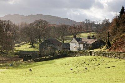 Cumbrian Farm