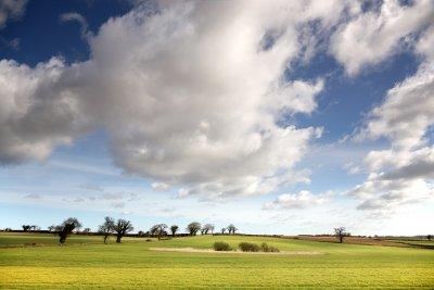 Norfolk Big Sky