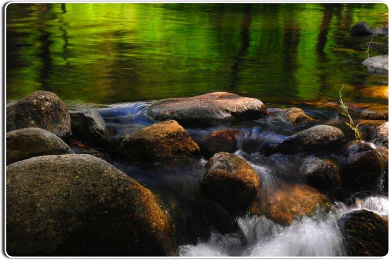 The Carmel River