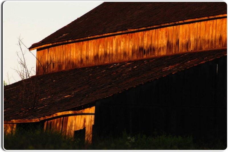 Abandoned Barn, Salinas Valley