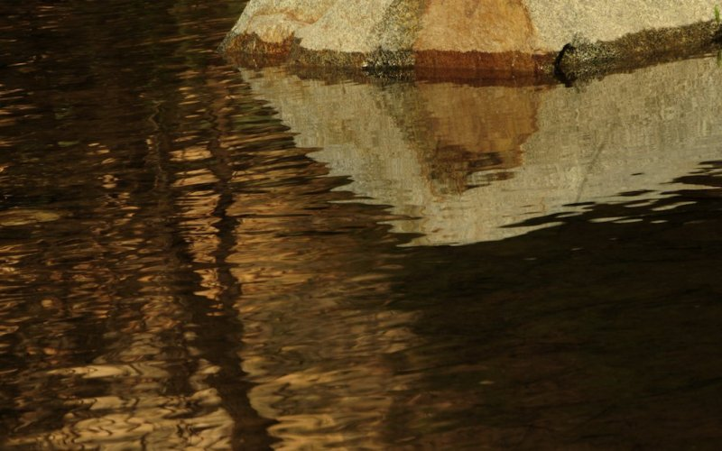 Reflections on the Edge of the Yuba River