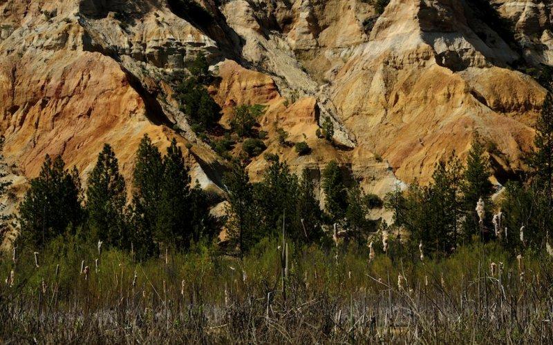 At Malakoff Diggins State Park
