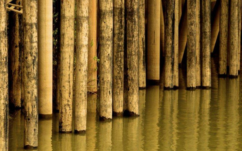 Pier Pilings, Sacramento, California