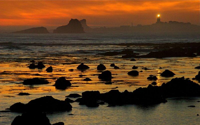 Piedras Blancas - Along the Central Coast of California