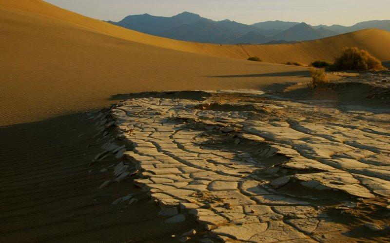 Sand Dunes & Mud Flats