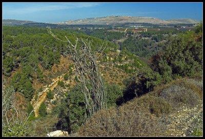 Mt. Puah view, Upper Galilee