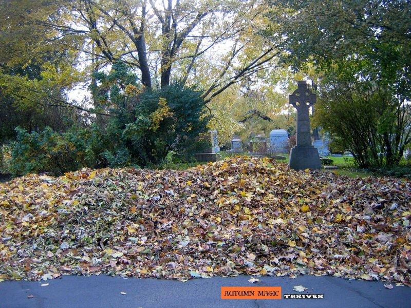 nurturing november piles of pure gold...