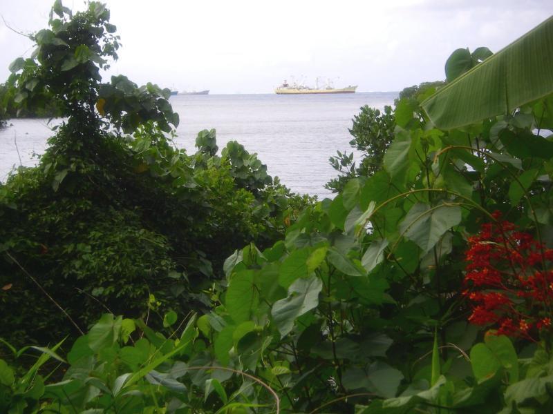 Kolonia Harbour