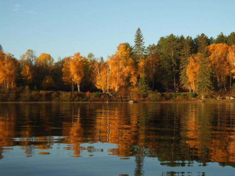 Fall Reflections1