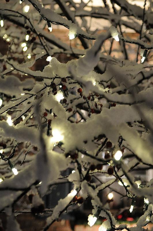 Outside lights_7.jpg