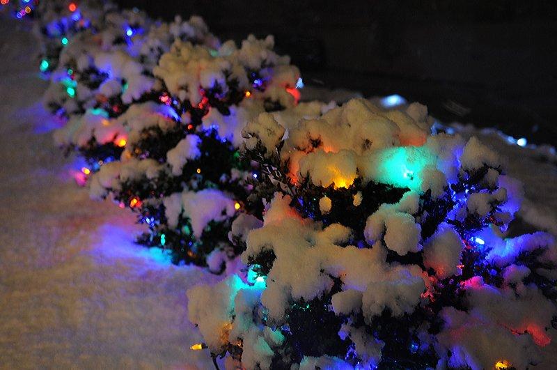Outside lights_14.jpg