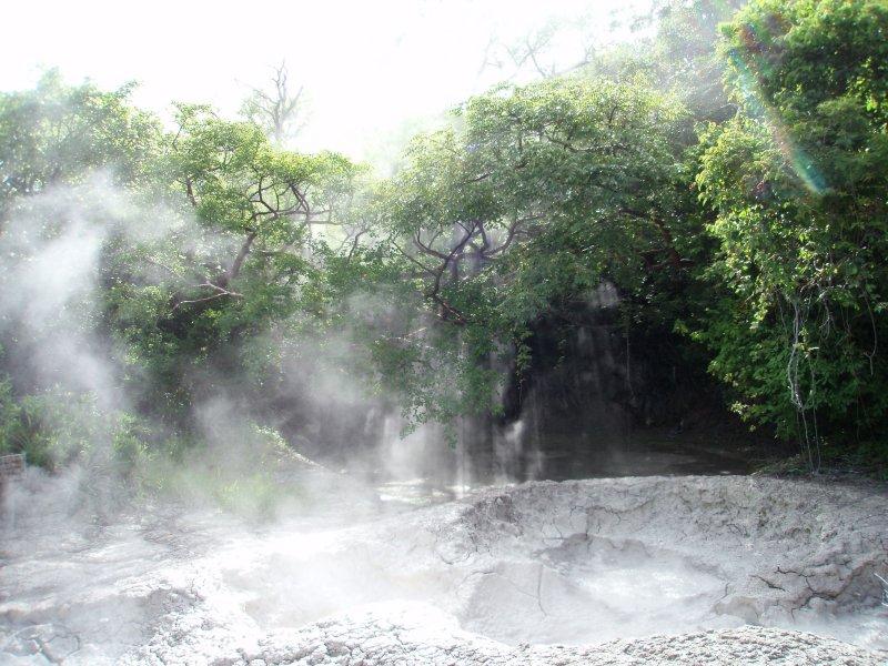 Steamy mudpots