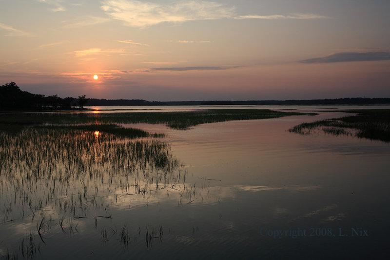 Evening on Marsh