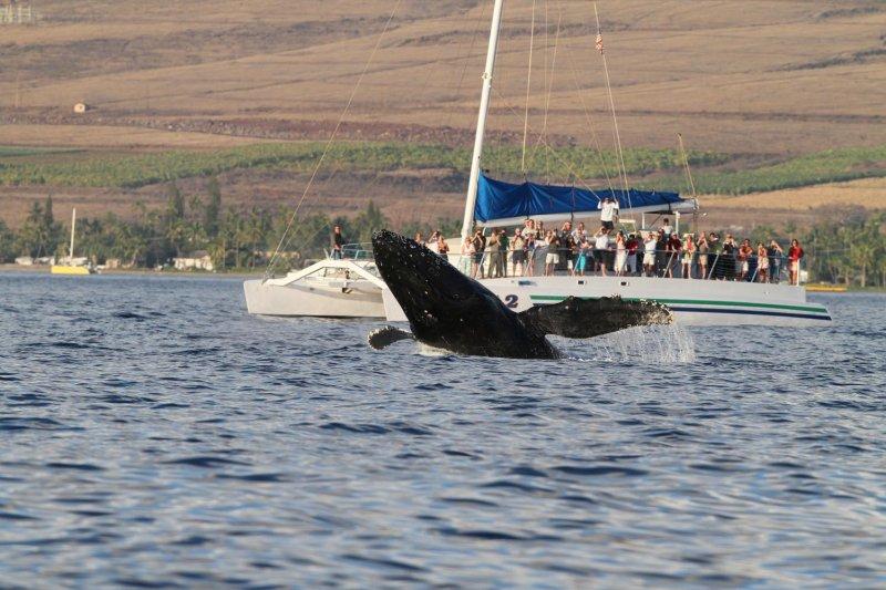 Maui 2010_03052010_371.jpg