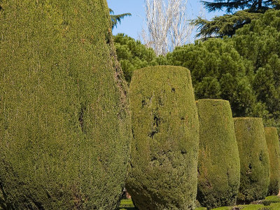 Jardines de Sabatini / Sabatini's gardens