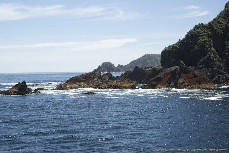 The Tasman Sea.jpg